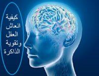 ثلاث خطوات لـ انعاش العقل والذاكرة